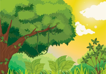Lush jungle scene at sunset Vector