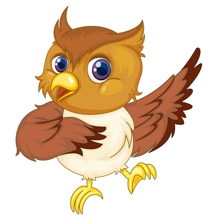 caricature: Illustration of an isolated comical owl