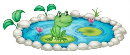 blue frog: Ilustraci�n de un peque�o estanque con una rana