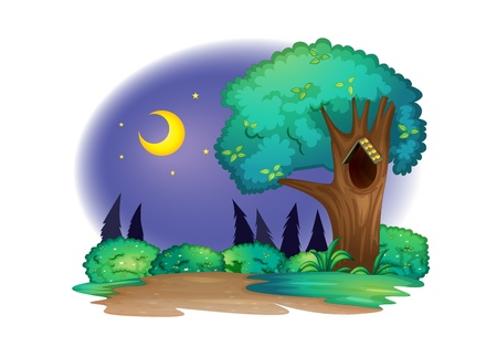 ocas: Ilustración de un árbol con hueco en la noche Vectores