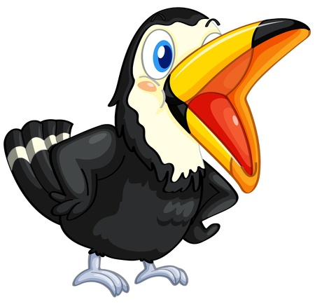 black beak: Illustration of a toucan on white background Illustration