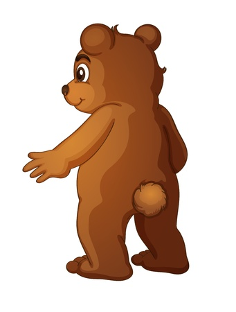 brown eyes: Brown bear on a white background Illustration