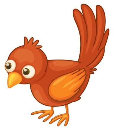 Słodkie czerwony ptak na białym tle Ilustracje wektorowe