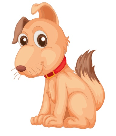 Cool confident dog on a white background Vector