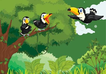 familia animada: Ilustraciones de la familia de los tucanes en la selva