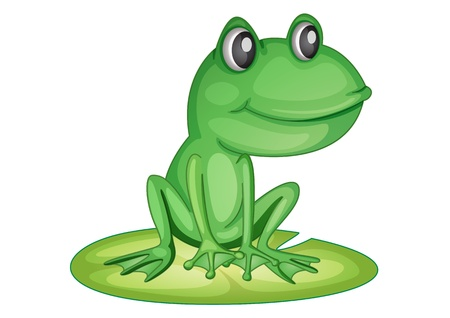 Illustration of a frog on a lily pad Vector