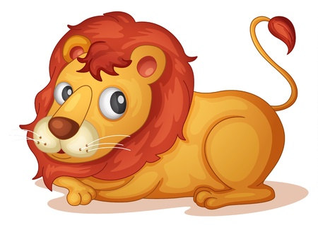 Illustration of a lion on white Vector