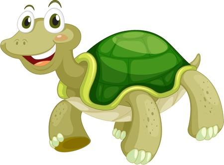 aquatic reptile: Animated turtle on a white background Illustration