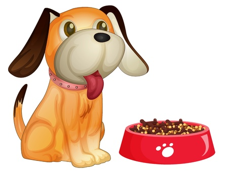 Illustration of a dog sitting next to his food Vector