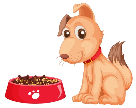 feeding: Illustration of a dog sitting next to his food Illustration