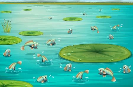 lirio acuatico: Ilustración de los peces saltando en un estanque