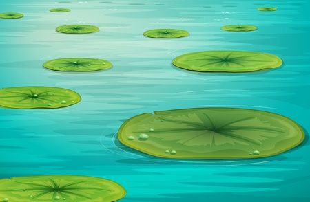 lily pad: Detailed illustration of calm pond scene Illustration