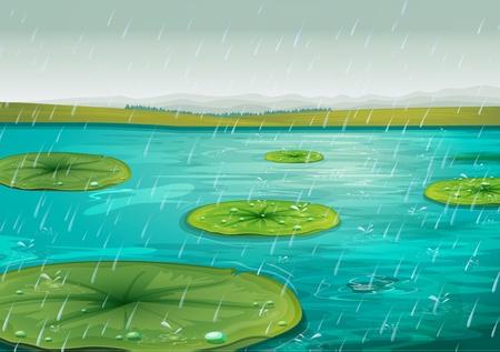 bach: Raining auf der Seerosen
