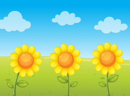 illustration of 3 sunflowers in field Vector