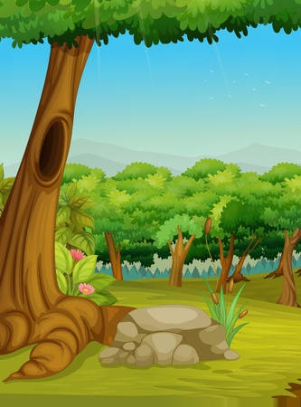 Illustration of a forest scene Vector