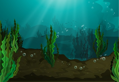 under the sea: Underwater in freshwater habitat Illustration
