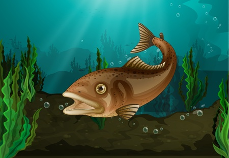 Freshwater fish in underwater habitat Vector