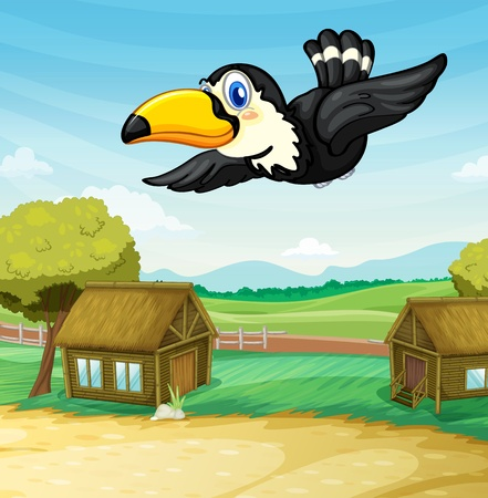 Illustration of toucan gliding through a camping ground