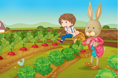 rzepa: Chłopca i raddishes kompletacji królik