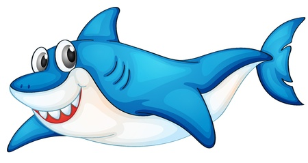 Illustration of a blue and white shark Vector
