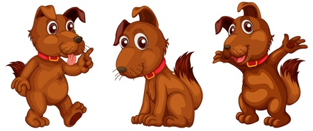 dog walking: Illustraiton of brown dogs on white
