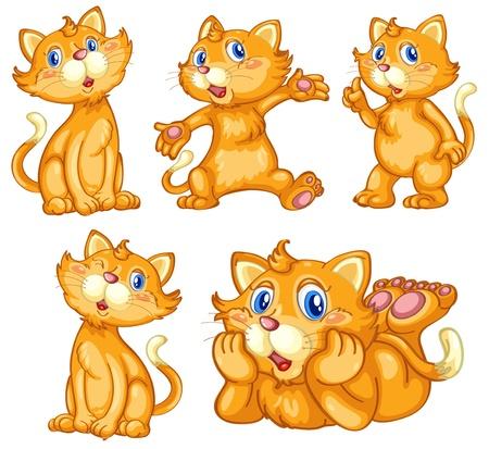cartoon poes: Illustraiton van komische kat-serie