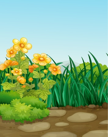 illustraiton: Illustraiton de una escena de jard�n vac�o