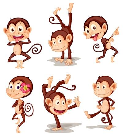 macaque: Illustraiton de la s�rie comique de singe