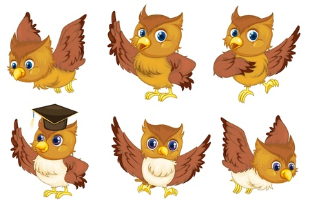 flying hat: Illustraiton of comical owl on white Illustration