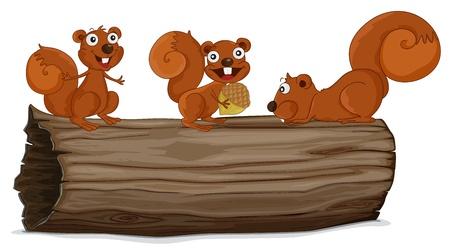 Illustraiton de ardillas en un tronco