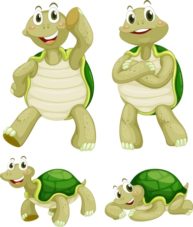 small group of object: Illustraiton of comical turtles on white