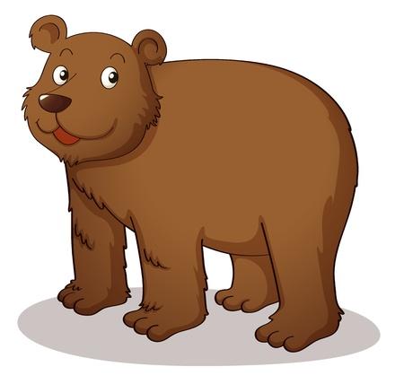 fleischfressende pflanze: Brown Grizzly auf wei�em Hintergrund Illustration
