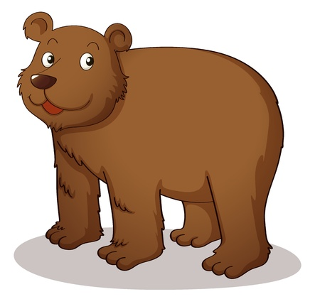 Brown grizzly on white background Vector