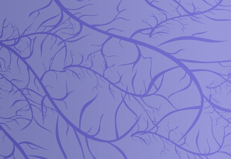 capillaries: Illustration of purple vein texture Illustration