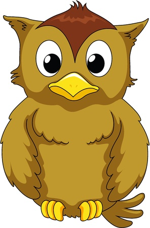 Illustration of wise owl on white Vector