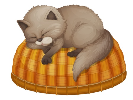 asleep: Illustration of cat sleeping on a basket