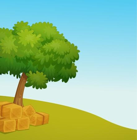 俵: 干し草の空のフィールドのイラスト  イラスト・ベクター素材