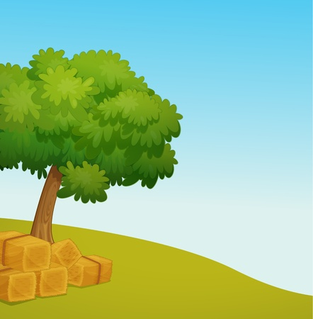 hay bale: Illustration of an empty field with hay Illustration