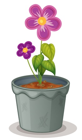 Illustration of an isolated pot plant