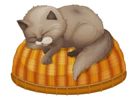 lying in bed: Illustration of kitten sleeping on basket