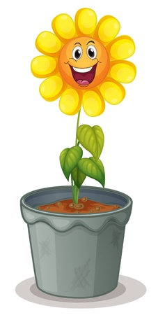 plant pot: Illustration of sunflower with face