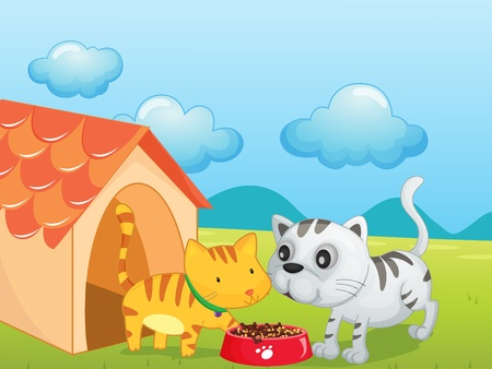outside the house: Illustration of two cute kittens eating Illustration