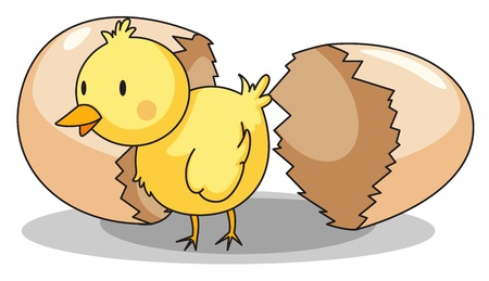 Illustration of a chick hatching Vector