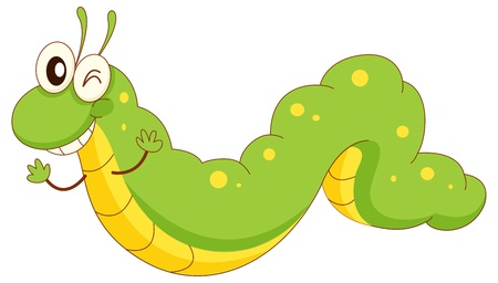 caterpillar: Illustration of a green caterpillar cartoon