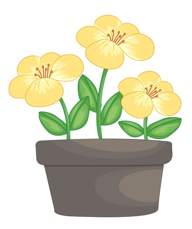 stamens: Illustration of yellow flowers in a pot Illustration