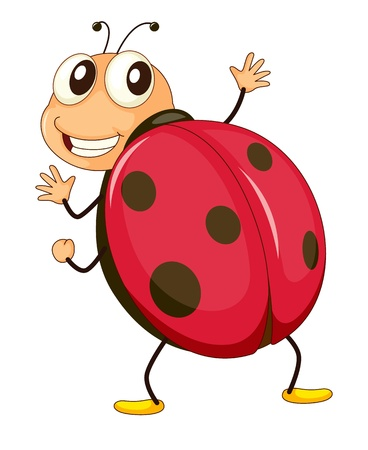 illustration of a comical ladybird Vector