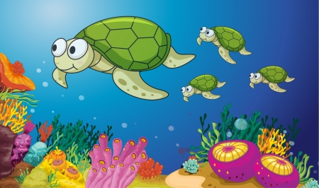 illustration of turtles underwater Vector