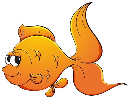 Illustration of goldfish on white Vector