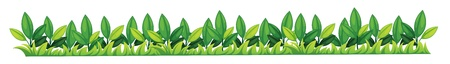 Illustration of a grass texture Stock Vector - 13732677
