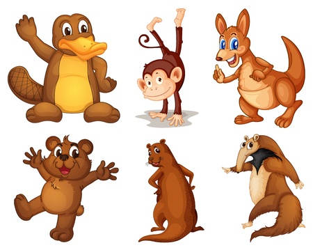 roo: Illustration of a set of cute animals